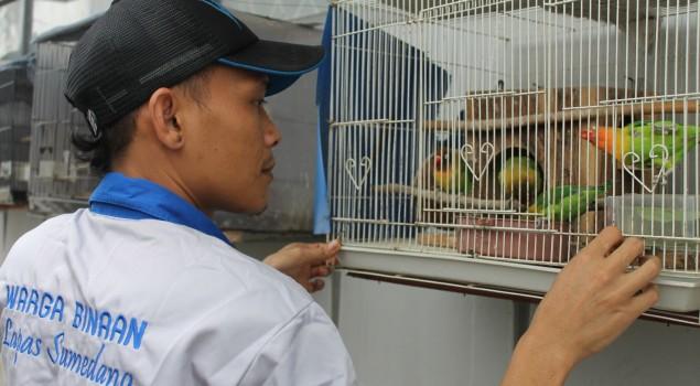 Senandung Burung Cinta Dari Lapas Sumedang