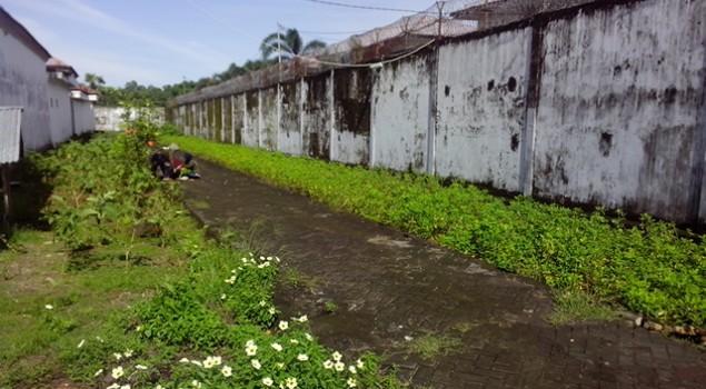 Kebun Kacang di Lapas Wanita Sungguminasa Siap Panen