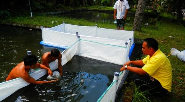 LPKA Karangasem Bekali ABH dengan Pelatihan Budidaya Ikan