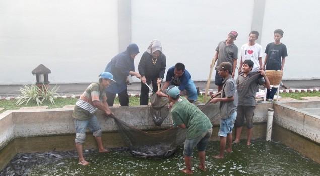 Pondok Asimilasi Rutan Serang Panen 2,5 Kuintal Lele