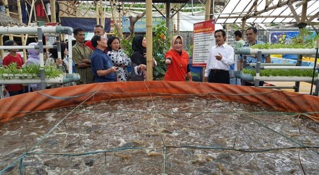 Kembangkan Budidaya Lele, Kanwil Banten Pelajari Metode Biofloc