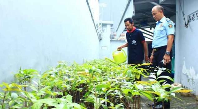 Lapas Sukabumi Hadiahi Pemkot Sukabumi Seribu Pohon