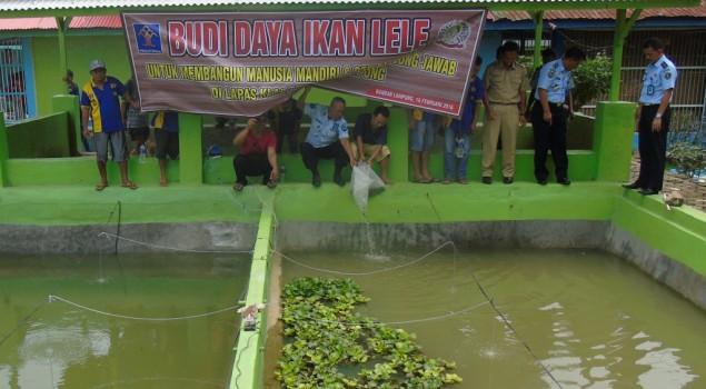 Lapas Bandar Lampung Budidaya 4000 Lele Sangkuriang
