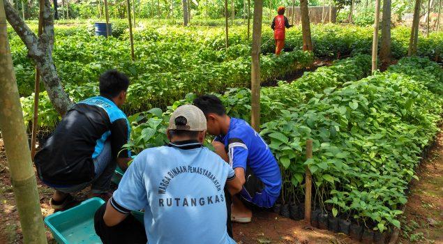 Pondok Asimilasi Rutan Rangkasbitung Terima Bibit Pohon dari Dinas Hutbun Lebak