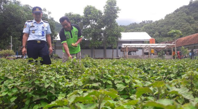 Rutan Trenggalek Akan Manfaatkan Lahan Kosong Untuk Pertanian
