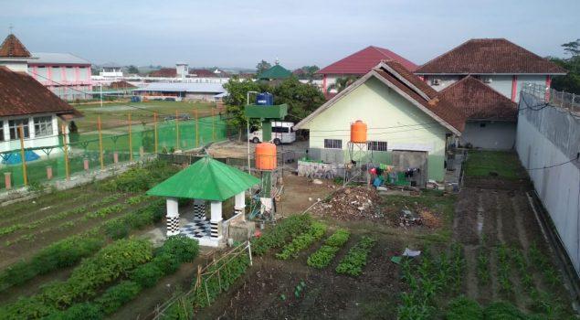 Budidaya Pertanian Rutan Lampung Usung Konsep Go Green