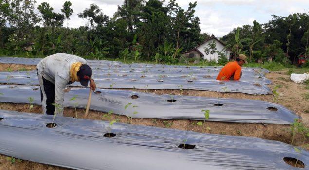 Rutan Rangkasbitung Siap Implementasikan Revitalisasi Pemasyarakatan