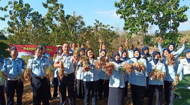 Rutan Wonogiri Sukses Memanen Jagung & Bawang Merah