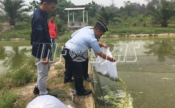 Lapas Sarolangun Dapat Bantuan 600 Kg Pakan & 1.000 Benih Ikan