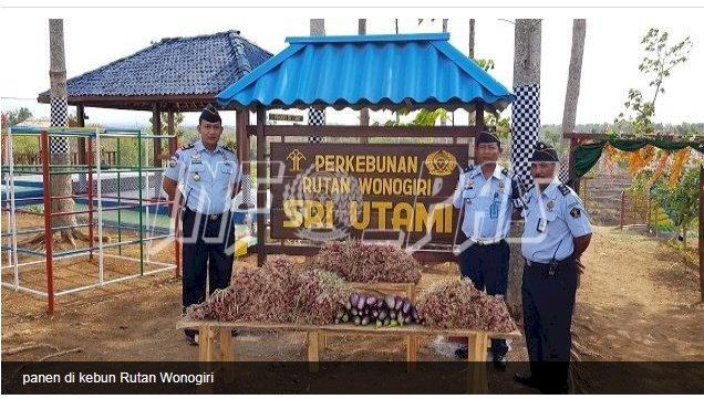 Rutan Wonogiri Panen 5 Kuintal Bawang Merah