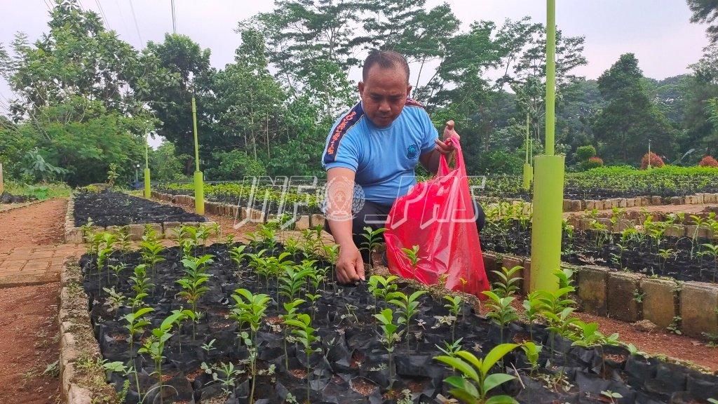 Persiapan Gedung Baru, LPKA Jakarta Dapat 50 Bibit Tanaman
