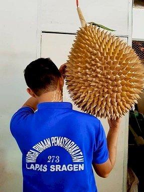 "Lapas Sragen Produksi ""Durian Terbesar"""
