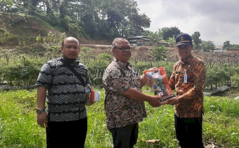 20 Kg Bibit Jagung Siap Dibudidayakan di Lahan Pondok Asimilasi Lapas Rangkasbitung