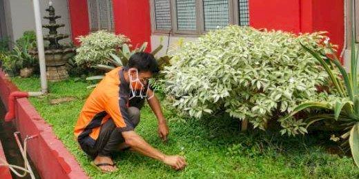 "Wujudkan ""Sustik Bersemi"", LPN Jakarta Lakukan Perawatan Taman"