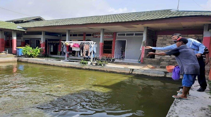 Budidaya Ikan Patin di Rutan Kuala Kapuas Siap Panen