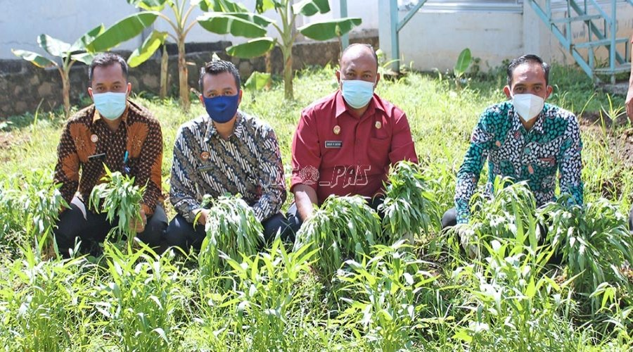 LPKA Jakarta Panen Kangkung