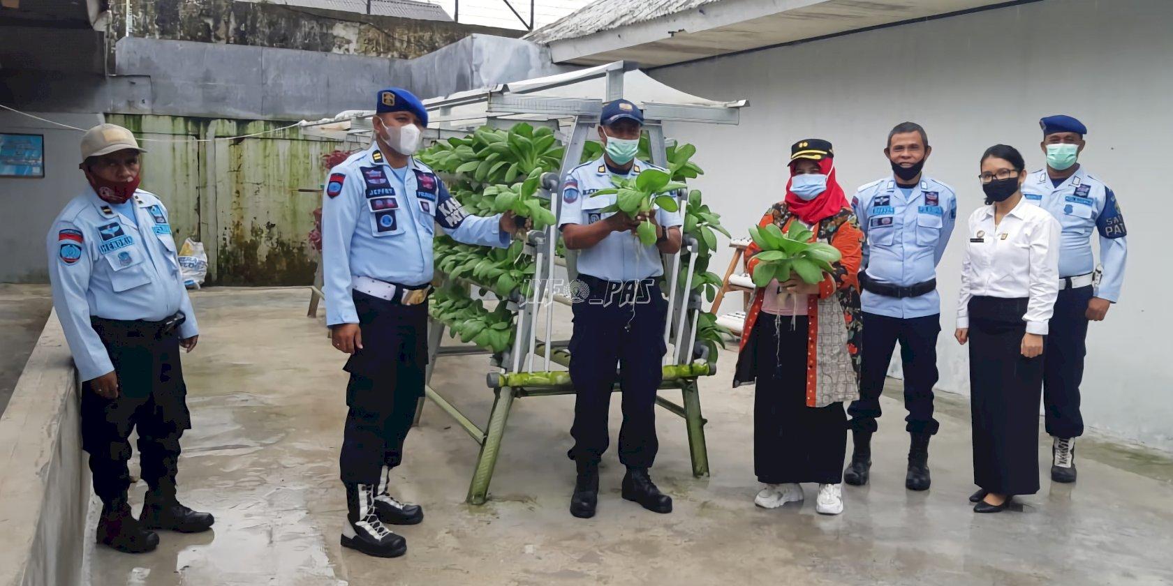 Rutan & Lapas di Maluku Panen Sayur & Kacang Tanah
